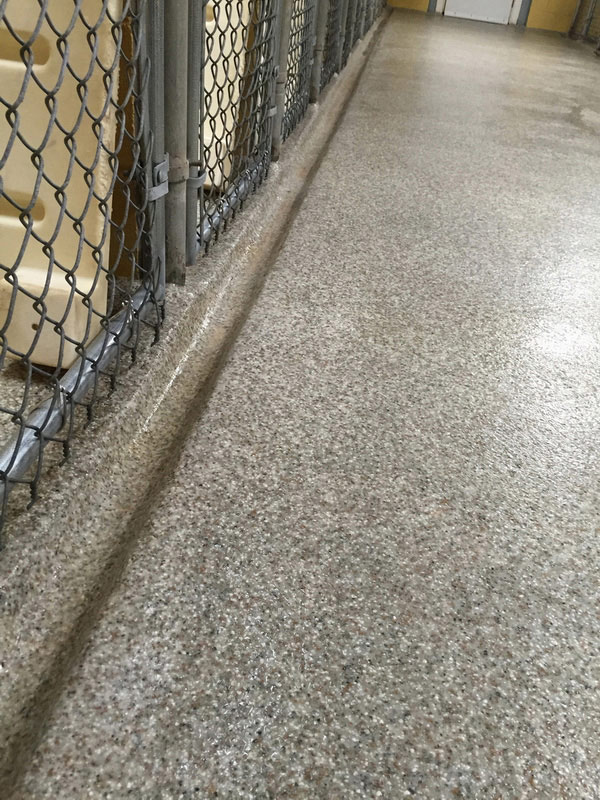 Veterinary Pet Floor Resists Odors Stains Amp Germs