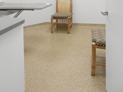 clean-veterinary-floor