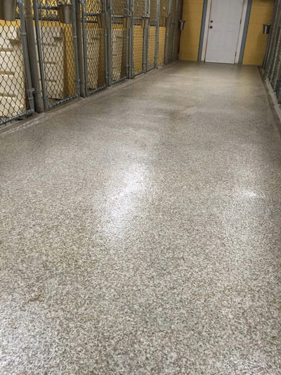kennel-epoxy-floor-coating