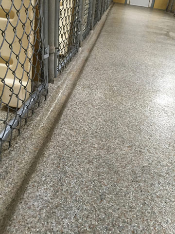 kennel-epoxy-flooring